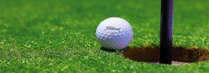 18 hole golf course Tendring Golf Club Golf Shop