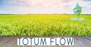 Totum-flow-water-softener