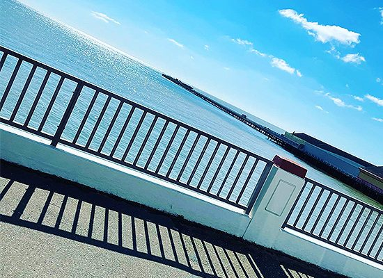 Walton Tavern Dog Friendy Sea View Great British Food Eating Out Outdoor Seating Pub Restaurant Takeaway Food Tendring Essex